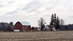 Farmyard (joeldinda) Tags: omdem1mkii em1 omd em1ii 2019 winter michigan eatoncounty roxana sky cloud tree building barn fields plowed 4354 january 12365 sunfieldtownship