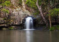 Kondalilla Rockpool (Rodney Topor) Tags: kondalillanp landscape queensland waterfall montville rockpool xt2 xf35mmf2 ndfilter slowwater longexposure