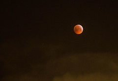 Super Blood Wolf Moon (coopsimages) Tags: superbloodwolfmoon superbloodmoon bloodmoon wolfmoon fullmoon moon lunareclipse eclipse sky night southampton stevecooper