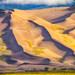 Morning Dunes - 3rd Place Published Images - William Horton