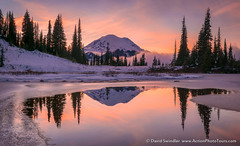 Last Reflection (David Swindler (ActionPhotoTours.com)) Tags: fog mtrainier rainier reflection snow tipsoo tipsoolake washington winter cold ice