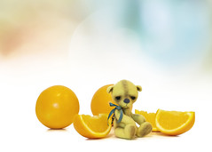 button does not like oranges (rockinmonique) Tags: button tinybear teddybear mini orange oranges yellow blue pink macro stilllife bokeh moniquewphotography canon canont6s tamron tamron45mm copyright 2019 monique w photopgraphy