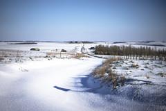 the untrodden byway (Redheadwondering) Tags: sonyα7ii salisburyplain wiltshire winter snow landscape byway sonyf1450mmlens