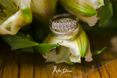 when two become one (artiedivin) Tags: when two become one rings flowers wedding nikon