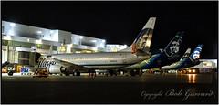 "Alaska Airlines ""C"" gates at  ANC (Bob Garrard) Tags: anc panc boeing 737 alaska airlines"