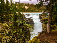 Athabasca Falls in Jasper National Park, Alberta, Canada (lhboudreau) Tags: athabasca falls waterfalls athabascafalls jaspernationalpark park nationalpark jasper alberta canada water river outdoor outdoors waterfall