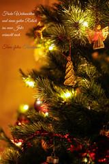 Merry christmas everyone (Traumfotos Trautmann) Tags: canonef5018stm weihnachten weihnachtsfotografie xmas christmas merrychristmas canon canoneos5dii canoneos5dmarkii christmastree weihnachtsbaum weihnachtsgrus