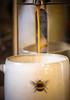 Caffeinated...... (Liz McMahon) Tags: coffee caffeine 52in2019 4 coffeebreak nikond750 nikon105mmmicro