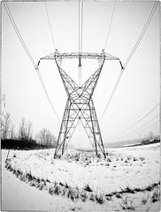 190119 Winter Minimalism 05 copy (Edward Bartel) Tags: m43ftw omd minimalism winter snow power 716 buffalove toned border fisheye 8mm on1pics on1photos silverefex snowfall lines niagaracounty ny usa