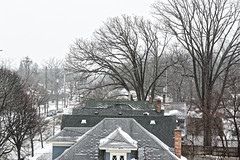 South Holmes Street (joeldinda) Tags: grey graysky street gray sky tree greysky cloud v2 4397 house nikon1v2 january sparrowhospital 1v2 nikon 2019 michigan lansing snow winter weather 233t65