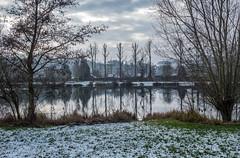 L'hiver sur l'étang.