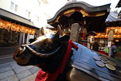 Cow in old shrine (Teruhide Tomori) Tags: tradition travel kyoto japan japon nishikitenmangushrine cow shrine 日本 京都 神社 関西 近畿 錦天満宮 牛 architecture construction