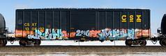 Reap/Mish (quiet-silence) Tags: graffiti graff freight fr8 train railroad railcar art reap ta 2dx mish mf stk boxcar csx csxt130432