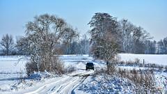 On a journey through the winter (Szymon Karkowski) Tags: outdoor winter snow landscape nature tree trees forest guard forester car nissan navara d22 journey trip road silesian voivodeship gliwice poland nikon d7100