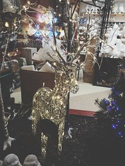 Christmas is almost here (krpena.lutkica) Tags: christmas advent holliday dear lights happiness winter