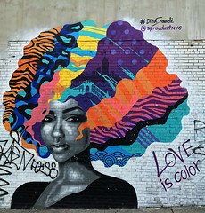 Love is Color by Dina Saadi (wiredforlego) Tags: graffiti mural streetart urbanart aerosolart publicart bushwick brooklyn newyork nyc dinasaadi