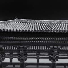 Tōkondō Hall (Tim Ravenscroft) Tags: tōkondō temple buddhist kofukuji nara japan monochrome blackandwhite blackwhite architecture hasselblad hasselbladx1d