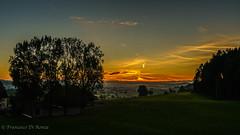 first light observation tower 3.)1809-438 (dironzafrancesco) Tags: ostschweiz sunrise landschaft nature himmel outdoor imfreien natur sonyfe1635mmf4zaoss bäume trees sonyilce7r2 lightroomcc sky landscape clouds wolken sonnenaufgang sirnach kantonthurgau schweiz ch