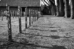 Drenthe (The Netherlands) - Veenhuizen - Graveyard - 15 (Björn_Roose) Tags: bjornroose björnroose drenthe nederland netherlands niederlände paysbas graveyard kerkhof veenhuizen