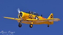 T-6 Texan (Hcengic) Tags: aviation airplane texan t6