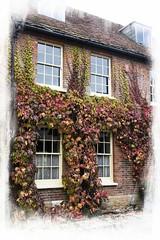 Colourful frontage (Audrey A Jackson) Tags: canon60d dorset cerneabbas house frontage colour windows