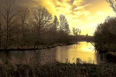 When the sun goes down (roland_tempels) Tags: bazel rupelmonde polder supershot belgium water nature trees reserve