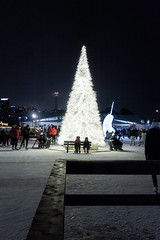 (lucasanthony8) Tags: ontario light christmas tree toronto skating winter snow cold canada canadian yyz nikon d7100