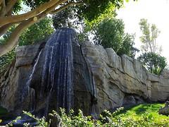 Bosque de África ecuatorial (MarisaTárraga) Tags: españa spain valencia bioparc zoo bosqueafricaecuatorial ngc naturaleza nature agua water cascada fujifilmsl300 arbol tree verde green hierba