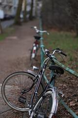 bokeh@Düssel, Düsseldorf (Amselchen) Tags: bike bicycle bokeh blur dof depthoffield street canon ef85mmf18usm canoneos6dmarkii