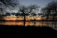 Der Himmel über Hamburg 1-5 (Elbmaedchen) Tags: alster sonnenuntergang januar abendhimmel blauestunde reflektion reflection sundown hamburg wasserspiegelung hamburgskyline ausenalster kraftwerkmoorburglaesstgruessen bäume wolkenformationen schilf
