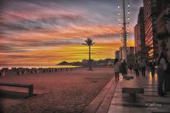 (034/29) Tarde de paseo y color (Pablo Arias) Tags: pabloarias photoshop ps capturendx españa photomatix nubes cielo arquitectura playa arena paseo mar agua mediterráneo palmeras benidorm alicante