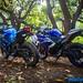 Yamaha-R3-vs-Kawasaki-Ninja-300-23