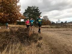 haarlerbergloop 10 km (76)