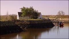 The red fishing boat (Armelle85) Tags: extérieur nature paysage lagune eau canal maison ciel barque bateau reflet