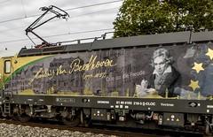 095_2018_09_28_Retzbach-Zellingen_6193_218_ELOC_SETG_Beethoven_Ode_an_die_Freude_mit_Holztransportzug ➡️ Würzburg (ruhrpott.sprinter) Tags: ruhrpott sprinter deutschland germany allmangne nrw ruhrgebiet gelsenkirchen lokomotive locomotives eisenbahn railroad rail zug train reisezug passenger güter cargo freight fret retzbachzellingen bayern unterfranken mainspessart brll byb db dbcsc dispo egp eloc hctor lm loc meg mt nesa öbb pkpc rhc rpool rtb sbbcargo slg setg xrail 0425 1016 1116 1211 1293 3364 5370 6139 6143 6145 6152 6155 6182 6185 6186 6187 6193 8170 logo natur outddor graffiti