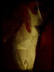 unicorn hidden in the dark (kazimierz.pietruszewski) Tags: digipaint digitalart digitalpainting canvas border abstract abstraction pictorial pictorialism unicorn monochrome form composition dark scary ghost strange