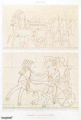 Fragments of military bas-reliefs from Histoire de l'art égyptien (1878) by Émile Prisse d'Avennes (1807-1879). Digitally enhanced by rawpixel. (Free Public Domain Illustrations by rawpixel) Tags: otherkeywords anillustrationoftheegyptian ancestry ancient ancientegyptian ancientegyptianart antique archaeological archeology art artwork basrelief cc0 design designing drawing dynasty egypt egyptian egyptiankingdom egyptology empire fragments gods handdrawn histoiredelartégyptien historical history illustration kingdom military mythology old oldfashioned outlines outlinesfromtheantique pattern psd romans sculpture sepia sketch story traditional vintage émileprissedavennes