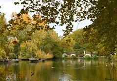 Autumn in St James`s Park  HFF (Eleanor (No multiple invites please)) Tags: coth5 cottage lake autumn stjamesspark london nikond7200 november2018