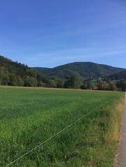 Running the halfmarathon distance for the first time (Dreisam Valley, Baden, Germany) (Loeffle) Tags: 092018 germany deutschland allemagne baden freiburg dreisamvalley dreisamtal running laufen halbmarathon halvmarathon p