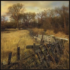 Waiting for winter… (odinvadim) Tags: iphoneart landscape iphoneonly iphonex iphoneography specialist mytravelgram autumn painterlymobileart old iphone snapseed evening artist instapickskyart frost sunset oldhouse travel textured editmaster textures icolorama