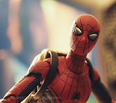 Spider-Man: Homecoming (Mars Mann) Tags: toyphotography articulation redandblue marvel mask disguise superhero comic character comicbookcharacter webslinger adventure fan depthoffield looking flickrmarsmann focus eyes marsmannphotography