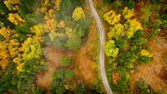 Autumn in Tzoumerka, Greece (Christophe_A) Tags: autumn colors colorful woods forest trees dji phantom4pro tetrakomo epirus greece christopheanagnostopoulos christophe christopheanagno mountains drone above fromabove road path