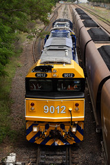 D406 @ Tighes Hill (Electric Motive) Tags: trains train trainspotting locomotive loco pacificnational pn
