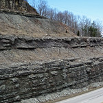 Slade Formation over Cowbell Member (Mississippian; Route 519 Outcrop, south of Morehead, Kentucky, USA) 2 thumbnail