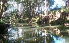 29 Tallawudjah Creek Road, Glenreagh NSW