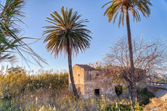 Old Building near Dolores (rtenny) Tags: agriculture architecture arecaceae arecales building countryside datepalm daylight flora grass gray housing hut landscape nature outdoor outdoors palm palmtree plant rural scenic seashore sky summer tourism travel tree vacation vegetation water