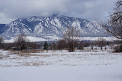 Dressed in white (Let Ideas Compete) Tags: flatirons snow mountains clouds mountain field farmland winter geology landscape outside fence explored winterscene boulderco bouldercolorado itscoldoutside