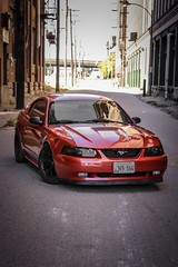714873F8-BD00-4F3E-A076-949A2E4EFD02 (Jacob Knapp) Tags: automatic automotive manual auto photoshoot picture shoot photo phot mustang