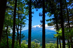 DSC02027_DxO (Garry Shu) Tags: japon japan kawaguchiko fuji fujisan nature montagne mountains trees hiking landscape sightseeing travel naturephotography natural instagram sony rx100
