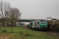 BB(4)75467 - HLP - Train n°357413 Gennevilliers > Le Bourget-Triage (nicolascbx) Tags: bb75400 bb75000 prima alstom siemens sncf fret locomotive train hlp lightengine gennevilliers portdegennevilliers lebourgettriage autumn automne bb75467 357413